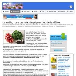 Le radis, rose ou noir, du piquant et de la détox