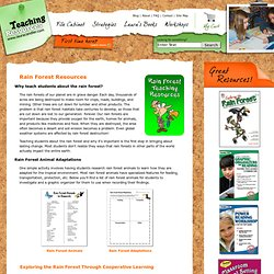 Rain Forest Resources for Teachers