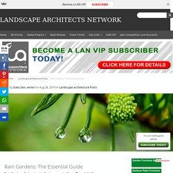 Rain Gardens: The Essential Guide