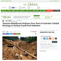 Amazon Rainforest Defense Now Part of Activists' Global Strategy to Defeat Fossil Fuel Industry