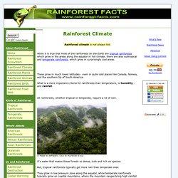 Rainforest Climate