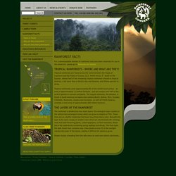 Rainforest Concern Facts