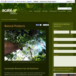 Natural Tropical Rainforest Products