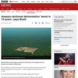 Amazon rainforest deforestation 'worst in 10 years', says Brazil