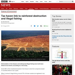 Tax haven link to rainforest destruction and illegal fishing