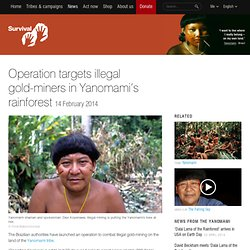 Operation targets illegal gold-miners in Yanomami's rainforest