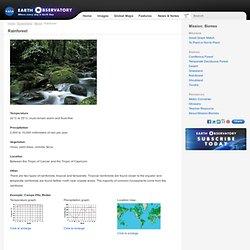 Rainforest : Mission: Biomes