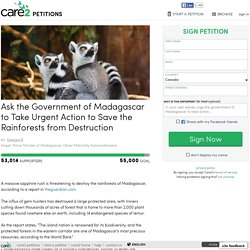 texte de la pétition: Ask the Government of Madagascar to Take Urgent Action to Save the Rainforests from Destruction