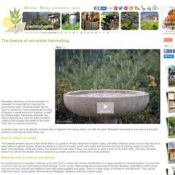 Rainwater Harvesting Basics