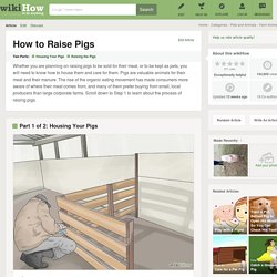 How to Raise Pigs: 12 Steps