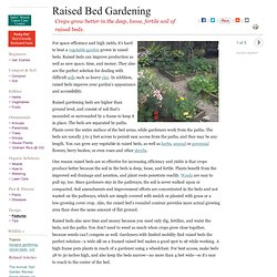 Raised Bed Gardening How To Guide