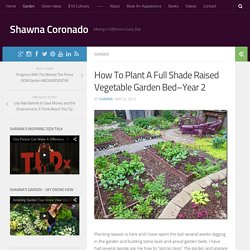 How To Plant A Full Shade Raised Vegetable Garden Bed–Year 2 - Shawna Coronado
