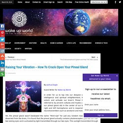 Raising Your Vibration - How To Crack Open Your Pineal Gland