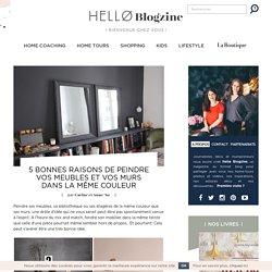 5 Bonnes Raisons de Peindre Vos Meubles et Vos Murs dans la Même Couleur - Hëllø Blogzine