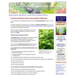 8 raisons d'utiliser l'ortie comme plante medicinale