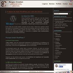 8 raisons de choisir Wordpress pour votre site internet
