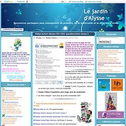 Rallye lecture albums CE1-CE2- questionnaires niveau 2