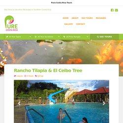 Rancho Tilapia & El Ceibo Tree