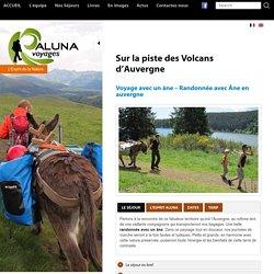 Randonnée avec un âne en Auvergne
