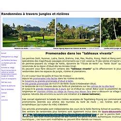 randonnée bali,promenades bali,balades guide francophone