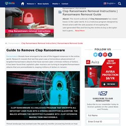 Clop Ransomware Manual Removal from the System