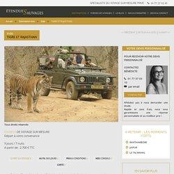 Safari tigre en Inde, à Ranthambore et découverte culturelle du Rajasthan