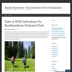Take A Wild Adventure To Ranthambore National Park