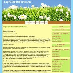 l'agroforesterie contre la famine - raphaelgardiabacque