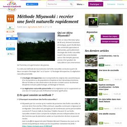 Méthode Miyawaki : recréer une forêt naturelle rapidement