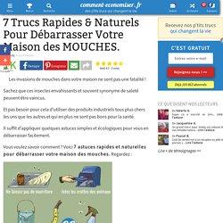 7 Trucs Rapides & Naturels Pour Débarrasser Votre Maison des MOUCHES.