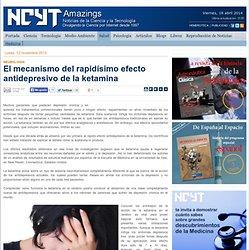 El mecanismo del rapidísimo efecto antidepresivo de la ketamina