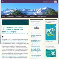 Le rapport du Cnesco : intérêt et limites, une approche critique.