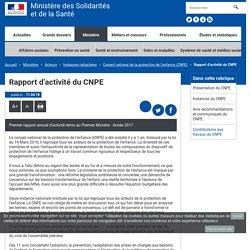 Rapport d'activité du CNPE