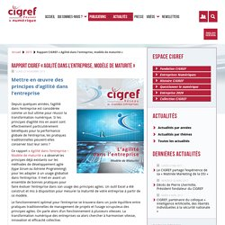 Rapport CIGREF « Agilité dans l'entreprise, modèle de maturité » – CIGREF