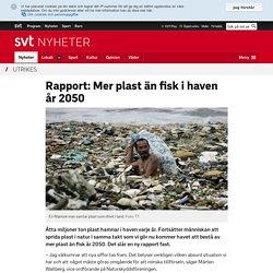Rapport: Mer plast än fisk i haven år 2050