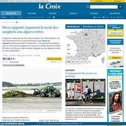 LA CROIX 07/09/11 Deux rapports imputent la mort des sangliers aux algues vertes