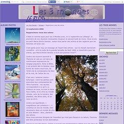Rapprochons–nous des arbres - Les Trois Mondes