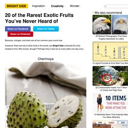 20 of the Rarest Exotic Fruits You've Never Heard of