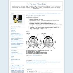 Le Rasoir Chantant: Coupe-chou: comment se raser?