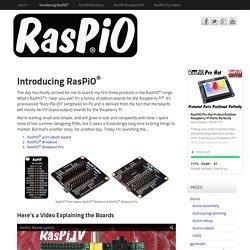 Introducing RasPiO<sup>®</sup>