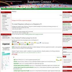 Raspberry Connect - Python