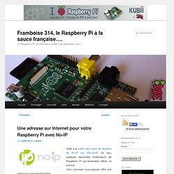 Une adresse sur Internet pour votre Raspberry Pi avec No-IP