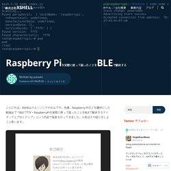 Raspberry Piを実際に使って困ったことをBLEで解決する