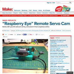 """Raspberry Eye"" Remote Servo Cam"
