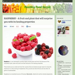 RASPBERRY – A fruit and plant that will surprise you with its healing properties