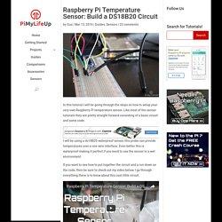 Raspberry Pi Temperature Sensor: Build a DS18B20 Circuit
