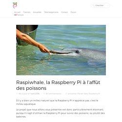 Raspiwhale, la Raspberry Pi à l'affût des poissons