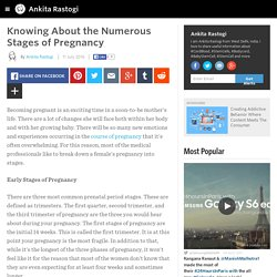 Knowing About the Numerous Stages of Pregnancy