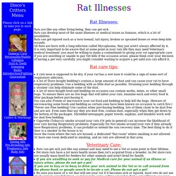 Rat Sicknesses & Illnesses