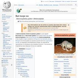 Rat-taupe nu